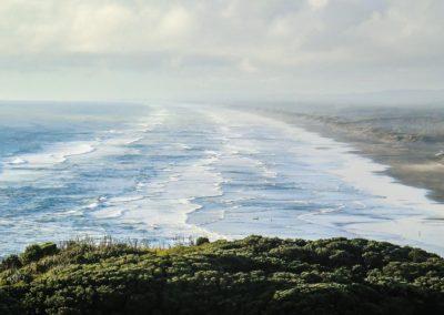 Reise - Neuseeland 14