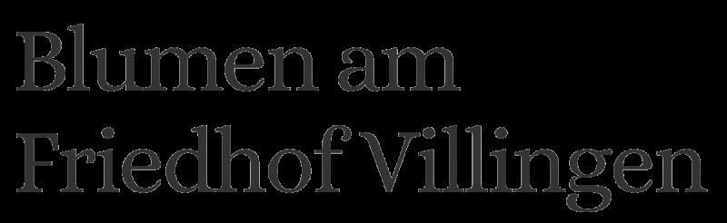 Voices of Joy Chor Villingen-Schwenningen co